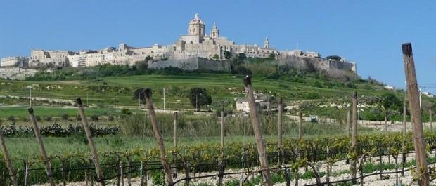 delicata wine festivals-quand partir à malte